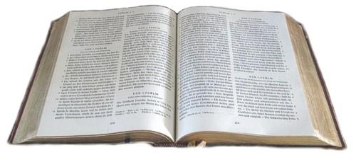 Grundlage der AG WELT: Die Heilige Schrift (Foto: privat)