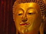 Buddha lächelt - Foto: Niki Vogt/pixelio.de