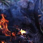 Walpurgisnacht: nur ein harmloses Feuer?