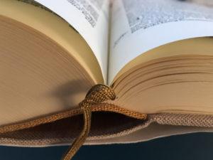 Die Bibel. Foto: Thomas Schneider/agwelt